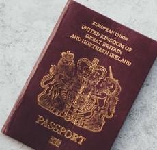 uk immigration service